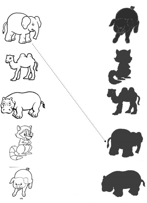 animal-shadow-match-worksheets-9
