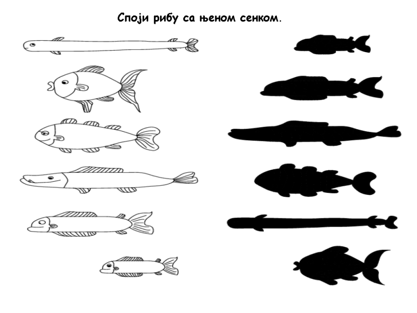 fish-shadow-match-worksheet