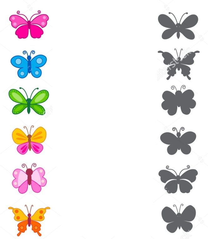stock-photo-worksheet-recognizing-shapes-draw-a-line-to-match-butterflies-and-their-correct-shadow-333079670